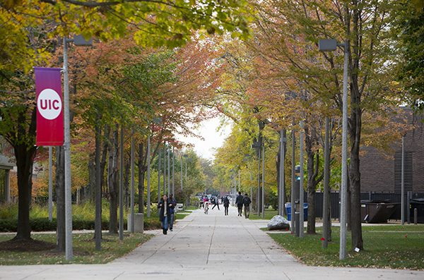 a tree-shaded campus walkway