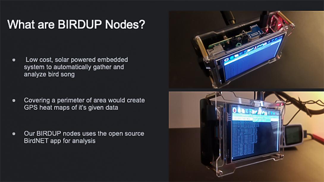 BirdUP node